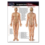 ACUPUNCTURE POINTS (LAMINATED POCKET SIZE PERMACHART)